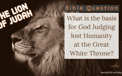 What Will Be the Basis for God Judging Lost Humanity at the Great White Throne?
