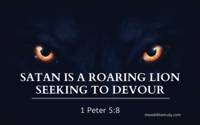 Be Steadfast and Alert Because Satan Seeks to Destroy You and the Church